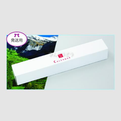 発送用ボックス A2切・46/4切用(共通)